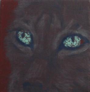 Wolfs eyes